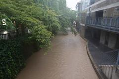 高瀬川 (GenJapan1986) Tags: japan river kyoto 日本 typhoon 高瀬川 京都市 京都府 takaseriver 2013 nikond600 台風18号