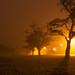 Kitsilano Beach Park, foggy