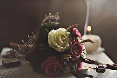 28.10 (Masha Iolis) Tags: flowers autumn home window cozy candle 365 365project