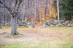 20131026-Vermont-1 (Laurel Tracy) Tags: mountains fall woods vermont autum hiking pumpkins chester vt hikingshoes ltworldtour ltsnapshots
