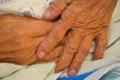 I love her hands. I always have and always will. (Poupetta) Tags: mom hands telavivisrael loveunconditionallove