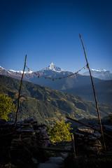 Fishtail mountain (TheSpencermiller) Tags: nepal mountain trekking canon rebel mt himalaya range annapurna sanctuary fishtail machapuchare