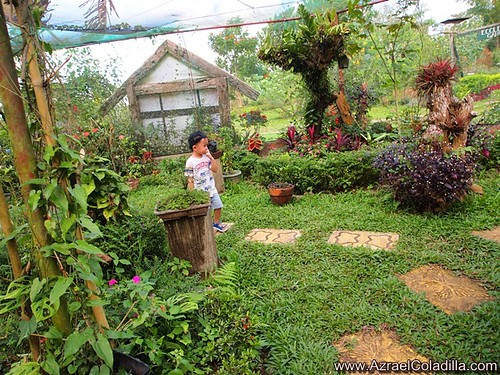 A visit in Paradizoo this December 2013 - holiday tripcation in Tagaytay part 2