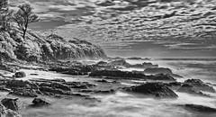Joshs Beach (screenstreet) Tags: longexposure blackandwhite beaches infrared dalmeny infraredfilter hoyar72 infraredphotography silverefexpro joshsbeach nikonnikkor18105mm