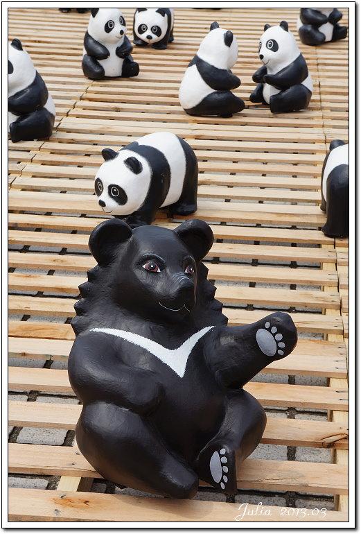 1600貓熊世界之旅 (20)