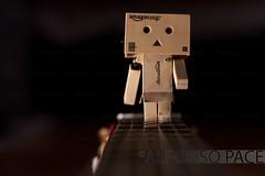 Walk on the strings (Alfonso P.) Tags: danbo danboard
