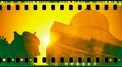 000020 (Tour Leader Luke) Tags: china trees film beijing beihai sprocketrocket lomographyredscale