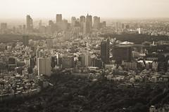Shinjuku Skyline (Ayrcan) Tags: city urban tower japan skyline island tokyo shinjuku asia skyscrapers capital aerial hills metropolis roppongi mori honshu