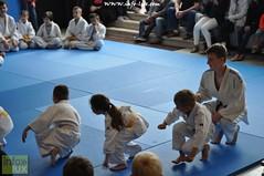Judo-habay031