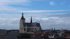 skyline Mechelen (mechelenblogt_jan) Tags: mechelen olvoverdedijlekerk hofvanegmont