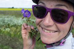 Le pays des fleurs. Violette attitude !