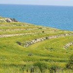 Majestic Green Landscape Cyprus on Sunny Day thumbnail