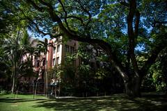 IMG_8728 (mechlerphotography) Tags: honolulu hawaii oahu royalhawaiian