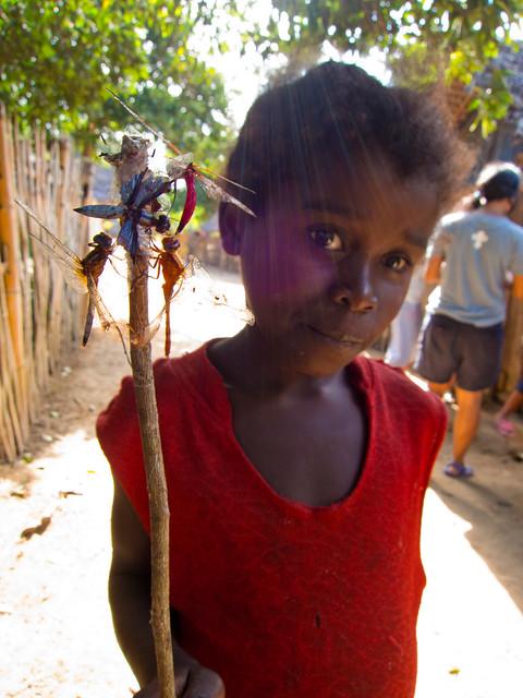 Madagascar5 - 125