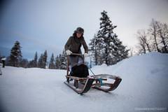 IMG_2273 (F@bione©) Tags: lapponia lapland marzo 2017 husky aurora boreale northenlight circolo polare artico rovagnemi finalndia finland