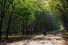 Con người và Thiên nhiên (Hoàng Phi Luân) Tags: kentonnode conngười natural environment