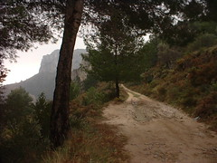 DSCF0024 (jzarcogo) Tags: mountainbike ibrica