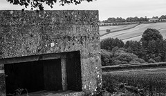 Pillbox (Al 8574) Tags: world old blackandwhite white black history archaeology landscape sussex war westsussex ww2 fortification invasion defence worldwar2 pillbox antiinvasion alicedore pulorough