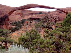 DSC02732 (bruckzone) Tags: ford t utah tour grandcanyon parks bryce zion nationalparks modelt canyonlands4