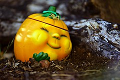 No particular place to go (Allan Saw) Tags: garden pumpkin sleep rest