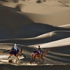 Desert riders (Tati@) Tags: travel light sunset india shadows dunes camels rajasthan riders thardesert thebestofday gnneniyisi mygearandme mygearandmepremium mygearandmebronze mygearandmesilver mygearandmegold mygearandmeplatinum mygearandmediamond photographyforrecreationeliteclub