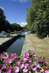 Lille, la Deule (Ytierny) Tags: france fleur vertical canal transport berge lille pniche navigation nord fleuve mtropole ecluse flandre deule citflamande ytierny