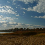 Looking south at Morgan Mudflats thumbnail