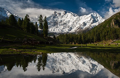 Nanga Parbat (8,126 m) from Fairy Meadows (Johan Assarsson) Tags: pakistan mountain lake reflection meadow himalaya grassland nangaparbat killermountain fairymeadows 2013 nakedmountain