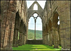 Tintern abbey (sambouz88) Tags: trees windows stone view columns carving views gras posts tinternabbey flickrandroidapp:filter=none
