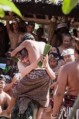 IMG_5126_Perang pandan II (gedelila) Tags: bali tenganan perangpandan gadisbali budayatenganan