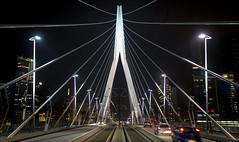 Erasmusbrug (Arie van Tilborg) Tags: rotterdam pylon maas erasmusbrug berkel nieuwemaas benvanberkel portofrotterdam