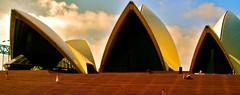Opera Steps (tamarajacobs83) Tags: music opera steps sydney operahouse