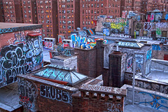 Rooftops of Chinatown (michaelelliottnyc) Tags: chinatown urban city nyc newyork newyorkcity manhattan neighborhood gritty graffiti tagging art color paint roofs rooftops buildings brick windows lights