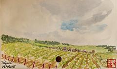Le Tour de France virtuel - 51 - Marne (chando*) Tags: croquis sketch aquarelle watercolor france