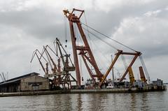 Porto de Belém (expedicaopara) Tags: brasil belém sette portos sindopar fernandosettecâmara ©fernandosettecâmara portosdopará estúdio estúdiosette pará