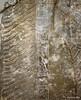 Detail of the slab depicting a standing genie (Merja Attia) Tags: genie reliefslab kalhu nimrud marble treeoflife kingassurnasirhpalii assurnasirpaliiperiod mesopotamia assyrian iraq museum ancientorientmuseum istanbul turkey istanbularkeolojimüzeleri ancienthistory