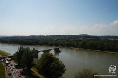 DSC08660t (bornvoyage) Tags: france avignon provence pont davignon bridge lavender cut 法國 亞維儂 亞維儂大橋 橋 古橋 old oldbridge 薰衣草 river rhone 羅納河 普羅旺斯
