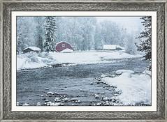 Red Barn, Snowstorm, Jackson Hole, Wyoming (Daryl L. Hunter - Hole Picture Photo Safaris) Tags: redbarn snowstorm jacksonhole wyoming