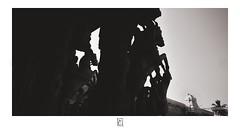 Stalion (krishartsphotography) Tags: krishnansrinivasan krishnan srinivasan krish arts photography fineart stalion silhouette horses srirangam tamilnadu india
