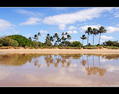 Bargara Beach (.Paul Jones.) Tags: sea reflection beach coast sunny australia queensland bundaberg bargara