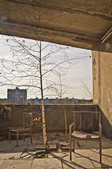Three at Pripyat hotel (MoraTilTordis) Tags: tree hotel radiation ukraine disaster second chernobyl pripyat