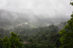 Fog in Madikeri valley