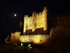 Claro de luna (Jesus_l) Tags: españa europa león castillo valenciadedonjuan coyanza jesusl