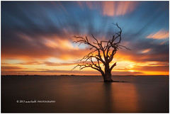 Winter's Breath (Dylan Toh) Tags: longexposure sunset tree sunrise landscape photography charlotte australia dee southaustralia murrayriver riverland everlook lakebonney nappersruins barmrea