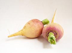 Nabos norfolk (CreatiVegan.net) Tags: norfolk turnip brassica nabo forrajero