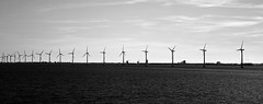 Wind plant (Julien Nmt) Tags: mer vent wind sound danemark copenhague eolienne windplant nergies olien nergiesrenouvelables dtroitdesound