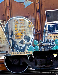 ICHABOD    ...     paint wearing thin! (INTREPID IMAGES) Tags: street railroad color art closeup train bench circle t skull graffiti fan fry paint steel painted sony stock tracks rail railway trains tags images 63 yme railcar intrepid writer boxcar graff grab ich freight rolling ichabod itd sfl paintedtrains benching intrepidimages