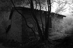 The house of the wood (Fotografo tutto ci che si fa raccontare.) Tags: italy house canon landscape photo italia bn lombardia canoneosdigitalrebelxt biancoenero bosco civate antomacro