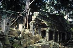 Ta Prohm - Collapsed Corridor (Drriss & Marrionn) Tags: city travel temple cambodia southeastasia buddhist ruin siemreap angkor taprohm hindu unescoworldheritage archeologicalsite khmerarchitecture yourbestoftoday blinkagain bestofblinkwinners blinkagainsuperstars blinksuperstars bestofsuperstars blink4gallery
