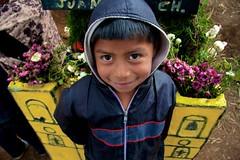"Rostro ""chilero"" (pabesfu) Tags: naturaleza maya guatemala traditions turismo mayas cultura indigenas ancestros tradiciones mayans sacatepquez barriletes sacatepequez guatelinda visitguatemala papilotes"